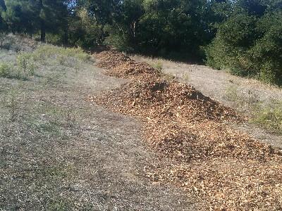Bark for trailor path at Belgatos Park in Los Gatos