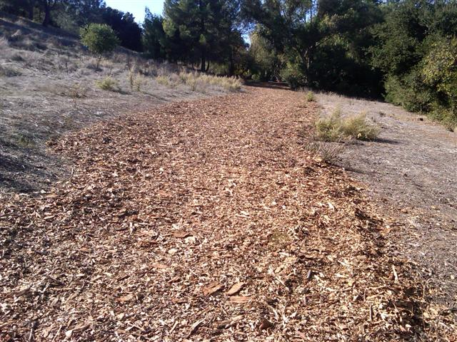 Chips flattened at Belgatos Park