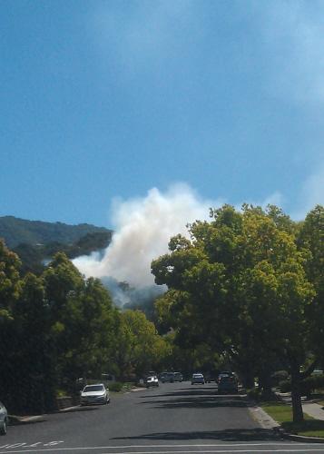 Fire in Belgatos Park near side entrance on Bacigalupi Drive.    Photo by Trish McCauley trish.mccauley@gmail.com