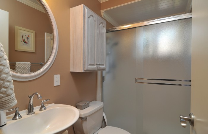 014 Downstairs Bathroom 700x450 - Exquisitely remodeled home & yard for sale in Belwood - 127 Belhaven Drive