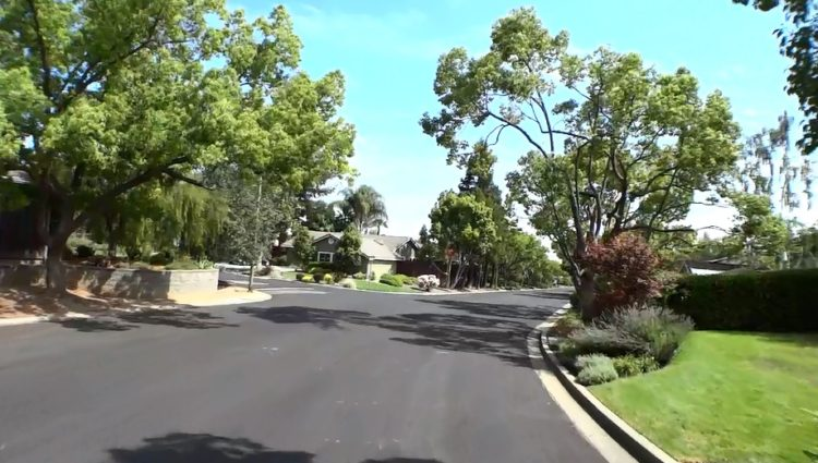 Bacigalupi Drive