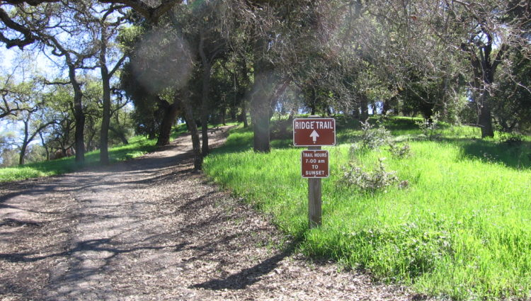 Hiking & horseback riding trails in the park