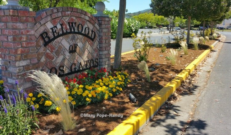 Belwood Gateway beautification project 2018