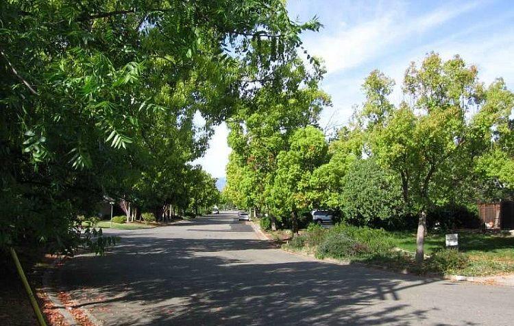 Bacigalupi Drive near Belgatos Park