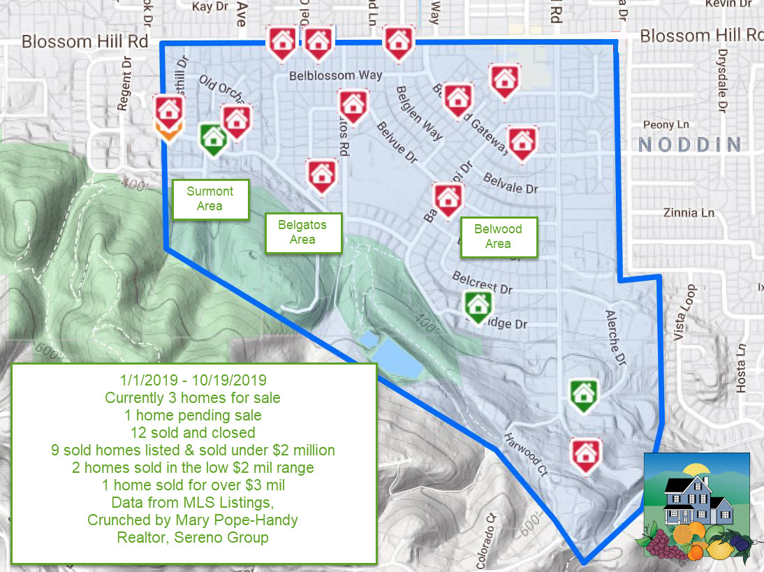 Map - 2019-10-19 Belwood area real estate activity YTD