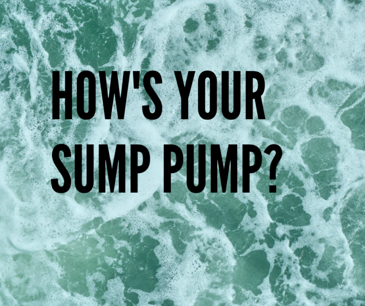 Graphic image: how's your sump pump?